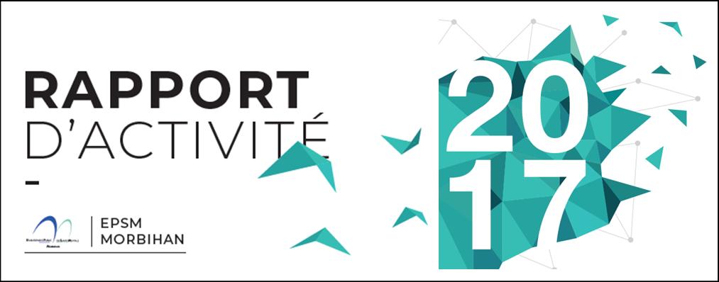 Rapport dactivité 2017